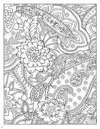 Dover Paisley Designs Coloring Book From
