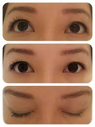 l oreal false lash erfly wings mascara waterproof