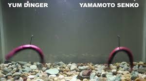 Yamamoto Senko Color Chart Yum Dinger Vs Yamamoto Senko
