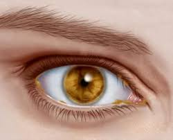 Eye Discharge — Causes, Symptoms, and Relief