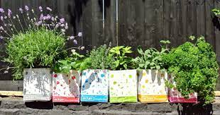 urban gardening ideas with container