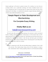 sample report on s development and merchandising by instant essay   15