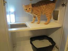 litter box hidden. Hol Hack To Hide The Litterbox Cats Pinterest Rhpinterestcouk Ikea Hidden Litter Box