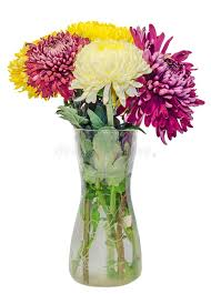 Download Transparent Vase With Chrysanthemum And Dhalia Purple And Yellow  Flowers, Isolated, White Background