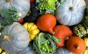 """Résultat de recherche d'images pour """"fruits et légumes octobre"""""""