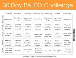30 day low carb meal plan diary of a fit 30 day paleo challenge come with free meal