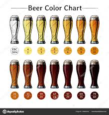 Srm Chart Beer Color Chart Stock Vector Suricoma 186562472