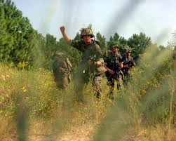 Marine Corps Hand Signals The Fire Team Leader Gives The Hand Signal To Halt During A