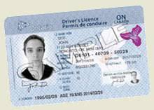 Gender With Ncpr News Issue Ontario Licenses To Driver's Neutral Option