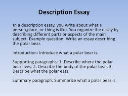different types of classification essays on types article how   essays on types of friend classification essay