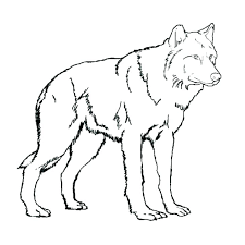 Minecraft Color Pages Coloring Pages Of A Wolf Wolf Coloring Pages