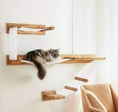 cat wall shelves large wall mounted