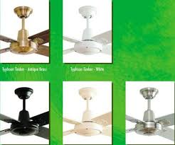 typhoon with timber blades ceiling fan hunter pacific