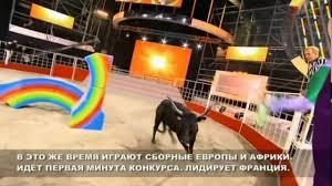 бг 2014 бой с быком под нас не догонят Hd Thestepbl 0403 Hd