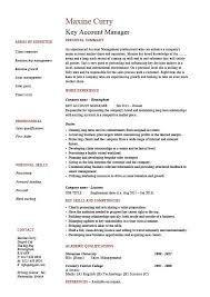 Key Skills Resume Examples Pinterest Sample Resume Resume And Simple Business Skills For Resume