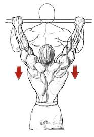 scoliosis workouts Body Transformation Workout Plan At Home pull ups 4 x 5 (this is to warm up but also pump your biceps and back muscles and get you ready for the toughest exercise, the deadlifts) Body Fat Loss Before and After