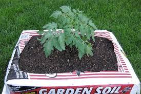 garden in a bag. Garden In A Bag G