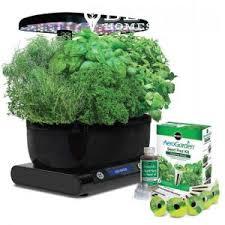 hydroponic herb garden. #3 Hydroponic Gardens Are Almost Maintenance Free Herb Garden T