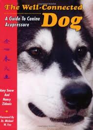 The Well Connected Dog A Guide To Canine Acupressure Amy