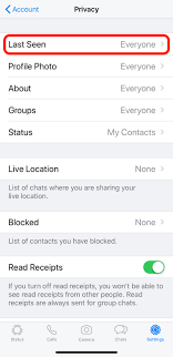 How to hide your online status on WhatsApp for privacy - Business Insider