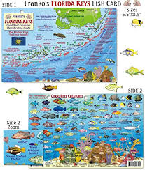 78 Well Defined Florida Reef Map App