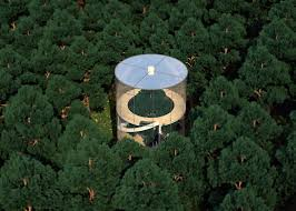 Tree House Architecture Tubular Glass House By Aibek Almassov Wraps Around A Full Grown Tree