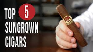 Image result for images top cigars