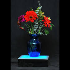 """Led Light Box Display Stand LED Display Stand 1000"""" x 1000"""" x 100"""" Lighted Sculpture Display 30"""