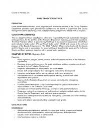 youth counselor resume pleasing resume sample for youth counselor with additional youth