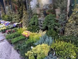 Nybg Landscape Design Certificate New York Botanical Garden Summer Intensives Giveaway