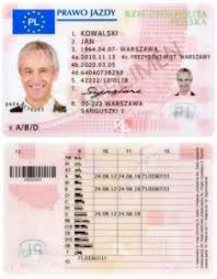 Licence Driving European Wikipedia -