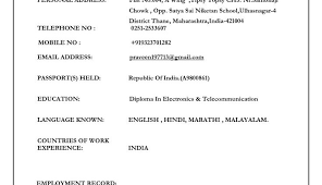 Biodata Format In Ms Word - April.onthemarch.co