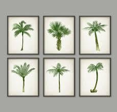 zoom on palm tree wall art set with palm tree botanical wall art print set of 6 modern home