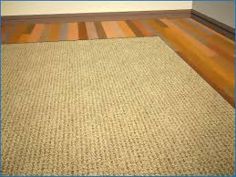 large size of cleaning a wool rug from pet urine 93041 best how to clean wool