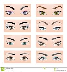 set of female eyes and eyebrows vector ilration eps10