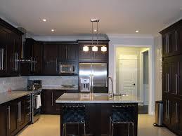 kitchen designs dark cabinets. Perfect Designs Kitchen Design Ideas Dark Cabinets Photo  4 In Kitchen Designs Dark Cabinets