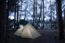 camping in the woods.  The Camping In The Woods By Side Of Lake St Clair Tasmania Inside Camping In The Woods