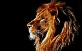 Wallpaper Creative Design Light Lion Mane Black
