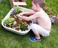 Growing Moss in your Fairy Garden | Fairy Gardening Australia