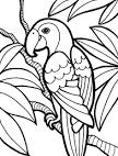 Раскраски онлайн попугаев