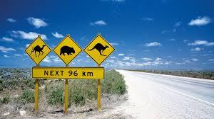 Auslandsaufenthalt australien