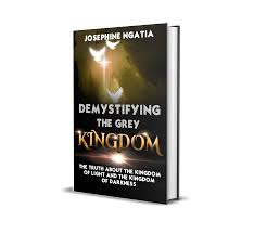Kingdom Of Darkness To Kingdom Of Light Demystifying The Grey Kingdom The Truth About The Kingdom Of Light And The Kingdom Of Darkness