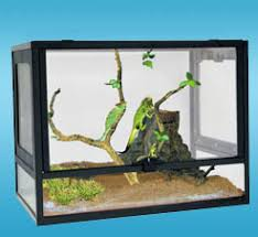 terrarium furniture. PT GLASS PET TERRARIUM Terrarium Furniture I