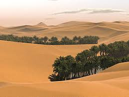 Image result for TROPICAL DESERT CLIMATE