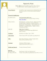 examples of work experience on a resume resume template dazzling examples of resumes no work experience on