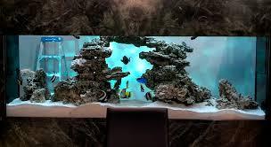 Image result for custom aquarium