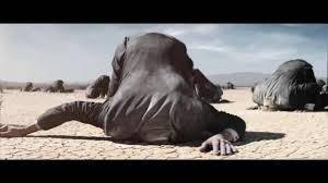 Image result for stock market head in sand