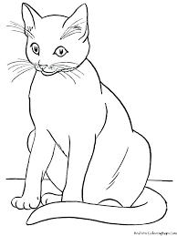 Kitty Cat Coloring Pages Cute Baby Cats Free Printable Page Hello Col