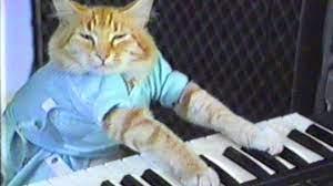 Keyboard Cat Plays Trump Off!