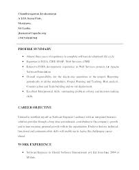 Profile Examples For Resumes Sample Of Resume Profile Resume Profile